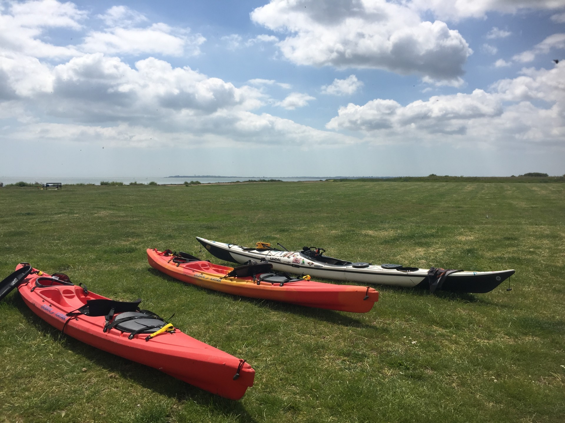 A selection of kayaks resting on the green grass on a sunny day