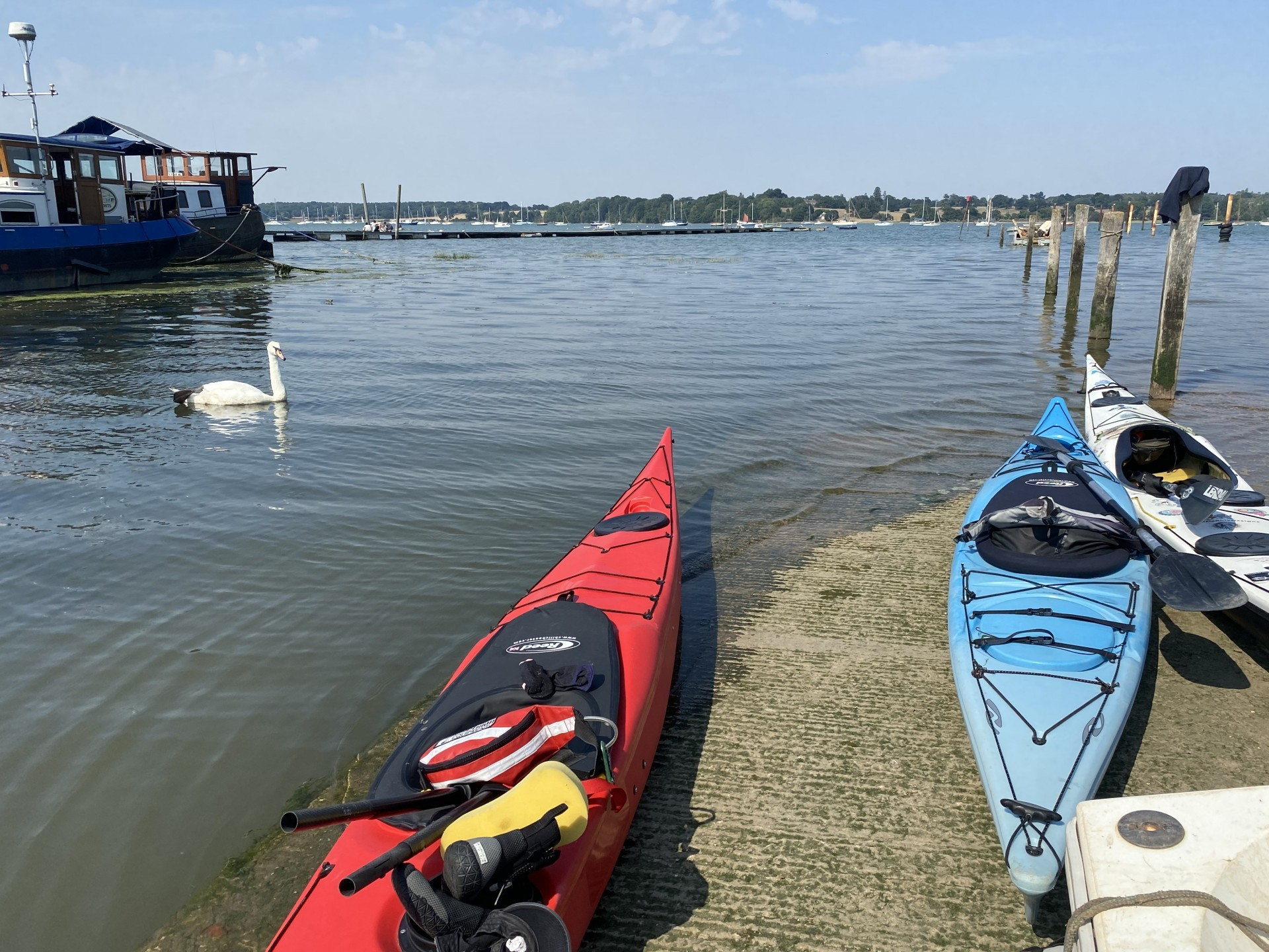 Sea kayaks on the slip with a swan in the background at Pin Mill on the Discover Kayaking trip