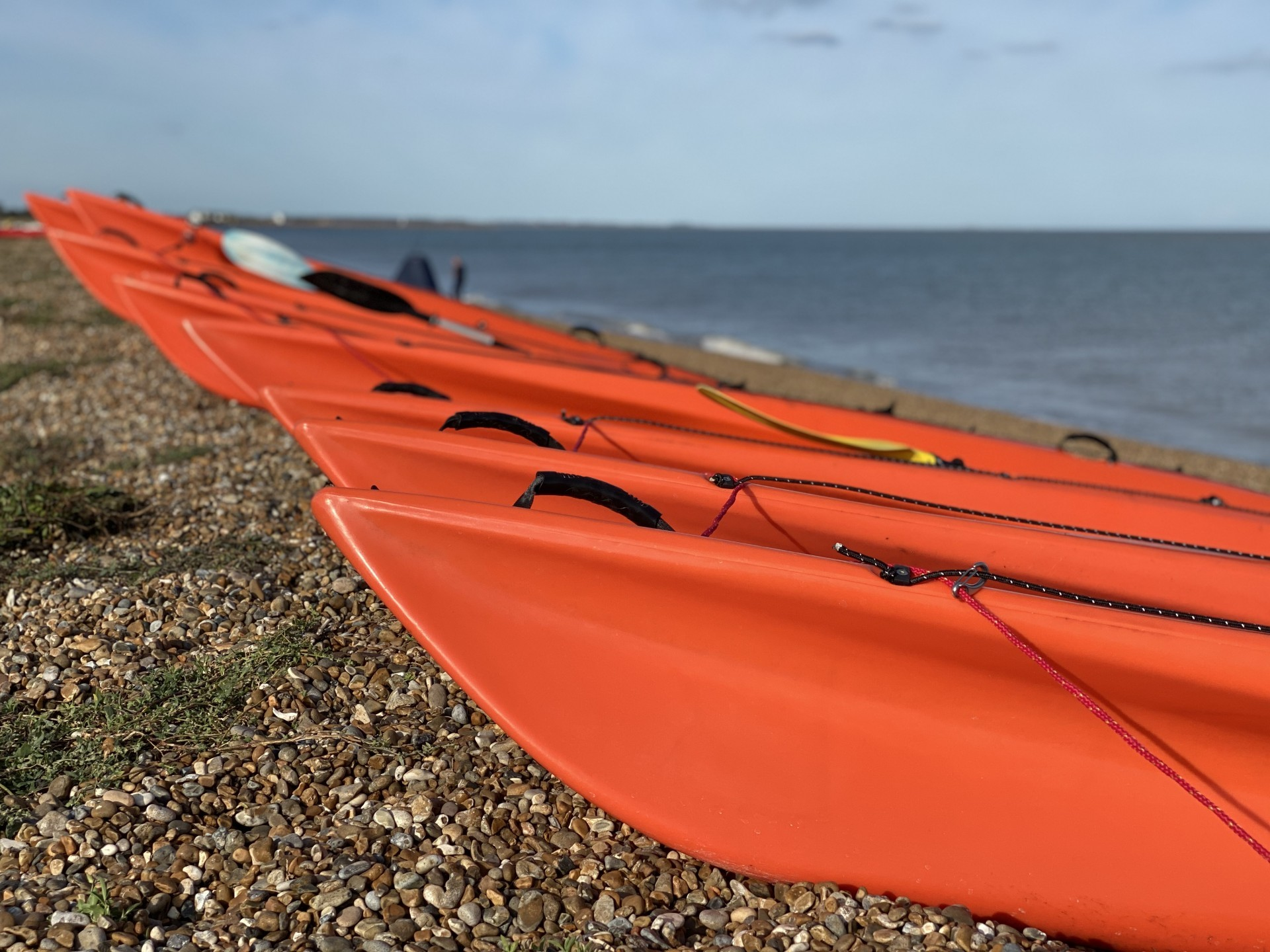 A long line of orange kayak bows on a shingle beach in the sunshine